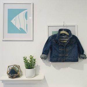 👧🏻Baby GAP 1969 denim jean jacket 2T